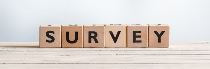 Authors Guild Author Salary Survey: What Do the Results Mean for Self-Published Authors?